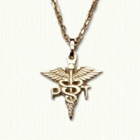 PT Caduceus in 14KY gold